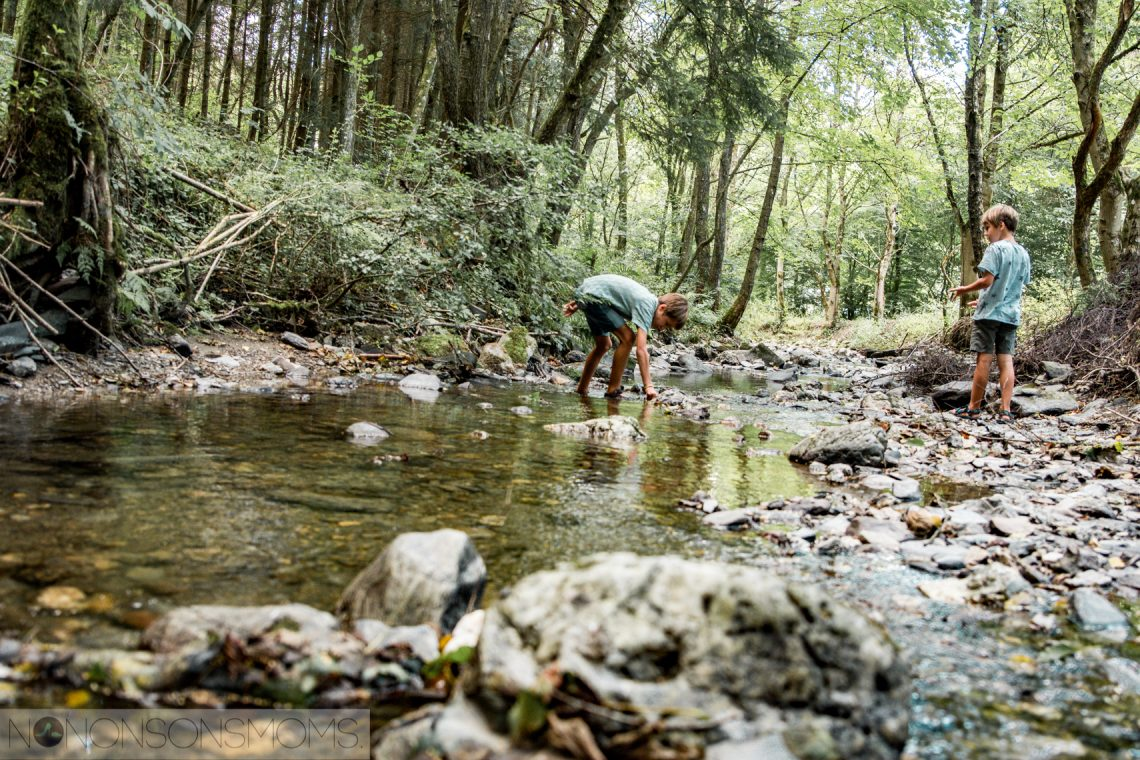 Kamperen met kinderen in de Duitse Eifel - Back to basic met dammetjes bouwen en kampvuur koken