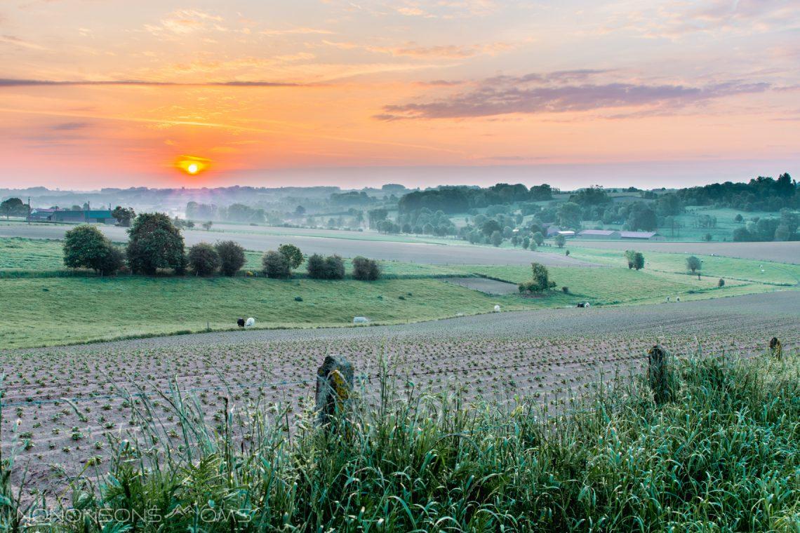 Workshop landschapsfotografie bij Bart Heirweg in de Vlaamse Ardennen